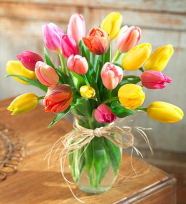 Tulips & Treats Special