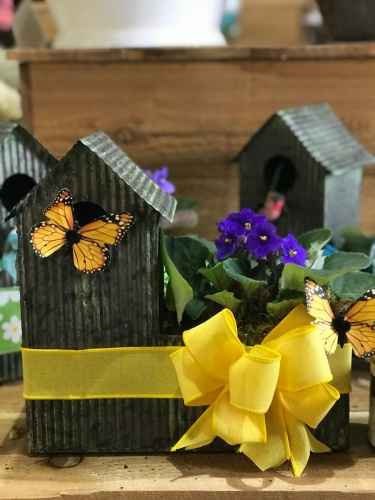 Charming Birdhouse with African Violet