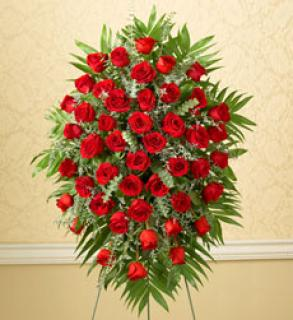 Tribute Four Dozen Rose Standing Spray