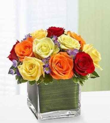 Rainbow Of Roses 30% Off! ~ Choose your Colors