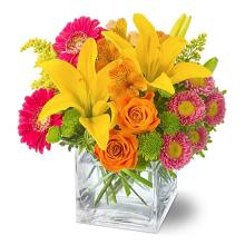 Splash of Color Bouquet